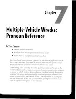 Multiple-Vehicle Wrecks - Pronoun Reference