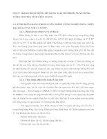 THỰC TRẠNG HOẠT ĐỘNG TÍN DỤNG TẠI CHI NHÁNH NGÂN HÀNG CÔNG THƯƠNG TỈNH KIÊN GIANG