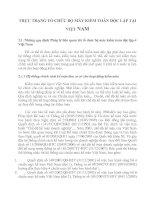 THỰC TRẠNG TỔ CHỨC BỘ MÁY KIỂM TOÁN ĐỘC LẬP TẠI VIỆT NAM