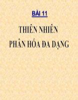 bai 11 Thien nhien phan hoa da dang