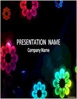 Bài giảng Mẫu PowerPoint đẹp (p4)