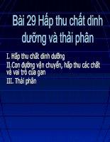 Bai 29: Hap thu chat dinh duong va thai pan