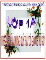 bài giảng 10-11 Luyện tập chung Tuần 17