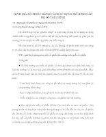 ĐỊNH GIÁ CỔ PHIẾU BẰNG CÁCH SỬ DỤNG MÔ HÌNH CÁC HỆ SỐ TÀI CHÍNH