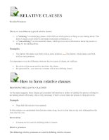 Relative clauses_Hay
