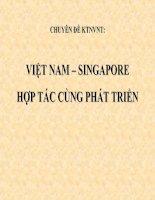 Chuyên đề nghiệp vụ kinh tế ngoại thương việt nam singapor cùng phát triển