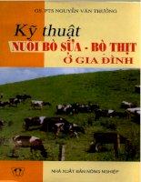 Kỹ thuật nuôi bò sữa - bò thịt ở gia đình (Gs PTs Nguyễn Văn Thưởng)