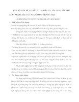 MỘT SỐ VẤN ĐỀ CƠ BẢN VỀ NGHIỆP VỤ TÍN DỤNG TÀI TRỢ XUẤT NHẬP KHẨU CỦA NGÂN HÀNG THƯƠNG MẠI