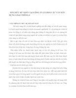 TỔ CHỨC KẾ TOÁN TẠI CÔNG TY CỔ PHẦN TƯ VẤN XÂY DỰNG GIAO THÔNG 8