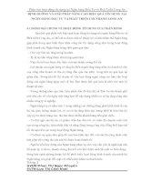 ĐỊNH HƯỚNG VÀ GIẢI PHÁP NÂNG CAO HIỆU QUẢ TÍN DỤNG TẠI NGÂN HÀNG ĐẦU TƯ VÀ PHÁT TRIỂN CHI NHÁNH LONG AN