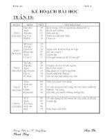 Tài liệu GA lớp 4- tuần 19-CKTKN-KNS-2010-2011