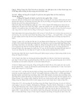 Bài giảng Bài thi tìm hiểu lịch sử Đảng CSVN
