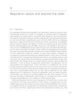 Regulation above and beyond the state