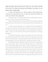 MỘT SỐ NHẬN XÉT ĐÁNH GIÁ VỀ CÔNG TÁC KẾ TOÁN CHI PHÍ SẢN XUẤT VÀ TÍNH GIÁ THÀNH SẢN PHÂMT TẠI CÔNG TY CỔ PHẨN NHỰA NHIỆT ĐỚI