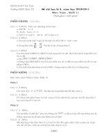 Đề thi HKI, môn toán, khối 11, 2010-2011