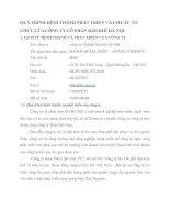QUÁ TRÌNH HÌNH THÀNH PHÁT TRIỂN VÀ CƠ CẤU TỔ CHỨC CỦA CÔNG TY CỔ PHẦN KIM KHÍ HÀ NỘI