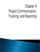 Chapter 9: IT project manager
