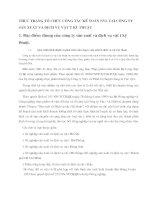 THỰC TRẠNG TỔ CHỨC CÔNG TÁC KẾ TOÁN NVL TẠI CÔNG TY SẢN XUẤT VÀ DỊCH VỤ VẬT TƯ KĨ  THUẬT