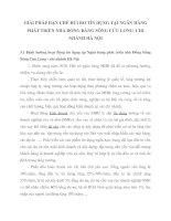 GIẢI PHÁP HẠN CHẾ RỦI RO TÍN DỤNG TẠI NGÂN HÀNG PHÁT TRIỂN NHÀ ĐỒNG BẰNG SÔNG CỬU LONG  CHI NHÁNH HÀ NỘI