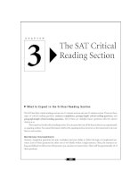 Learning express Acing The Sat 2006_The SAT Critical Reading Section