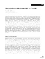 Prenatal counselling and images of disability