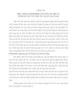 PHÂN TÍCH THỰC TRẠNG SẢN XUẤT KINH DOANH CỦA CÔNG TY Cao Su Sao Vàng