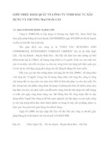 GIỚI THIỆU KHÁI QUÁT VỀ CÔNG TY TNHH ĐẦU TƯ XÂY DỰNG VÀ THƯƠNG MẠI NGÃI CẦU