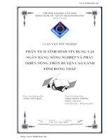 Phân tích tình hình tín dụng tại Ngân hàng Nông nghiêp và phát triển Nông thôn chi nhánh huyện Cao Lãnh tỉnh Đồng Tháp.pdf