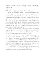 TỔ CHỨC CÔNG TÁC KẾ TOÁN CHI TIẾT NGUYÊN VẬT LIỆU Ở CÔNG TY 20