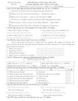 Bài giảng Đề thi lớp 5 môn Tiếng Anh 5 HK I
