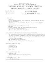 Gián án Bai 41. Moi truong va cac nhan to sinh thai