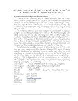 Tổng quan về kinh doanh và quản lý Công ty TNHH Sản xuất và Thương Mại Hưng Phát