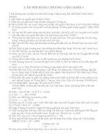 Tài liệu Câu hỏi rung chuông vàng khối lớp 5