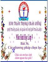 Bài giảng Bai 36. Cac phuong phap chon loc