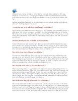 7 cách đánh bóng website của bạn