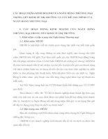 CÁC HOẠT ĐỘNG KINH DOANH CỦA NGÂN HÀNG THƯƠNG MẠI TRONG NỀN KINH TẾ THỊ TRƯỜNG VÀ CƠ CHẾ TÀI CHÍNH CỦA NGÂN HÀNG THƯƠNG MẠI