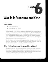Woe Is I - Pronouns and Case