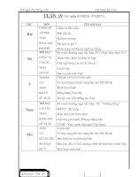 Bài giảng GA 4 tuan 19 2010-2011