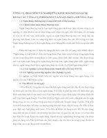 CÔNG CỤ PHÁI SINH VÀ NGHIỆP VỤ KINH DOANH NGOẠI TỆ BẰNG CÁC CÔNG CỤ PHÁI SINH CỦA NGÂN HÀNG THƯƠNG MẠI