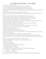 Bài giảng TÀI LIỆU BỒI DƯỠNG TIẾNG VIỆT 5