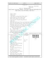 Bài soạn HKI 2010-2011