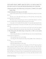 GIẢI PHÁP PHÁT TRIỂN KHÁCH HÀNG SỬ DỤNG DỊCH VỤ TÍN DỤNG BÁN LẺ TẠI CHI NHÁNH THANH XUÂN NĂM 2010