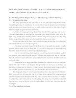 MỘT SỐ VẤN ĐỀ CƠ BẢN VỀ PHÂN TÍCH TÀI CHÍNH DOANH NGHIỆP TRONG HOẠT ĐỘNG TÍN DỤNG CỦA CÁC NHTM.