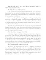MỘT SỐ NHẬN XÉT VÀ KIẾN NGHỊ VỀ TỔ CHỨC HẠCH TOÁN TẠI CÔNG TY GIẦY THĂNG LONG