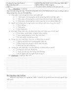 Bài giảng DE KIEM TRA DINH KY LAN 1 NAM 10-11