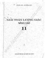 GIẢI TOÁN LƯỢNG GIÁC 11 NÂNG CAO (LÊ HỮU TRÍ - LÊ HÔNG ĐỨC)