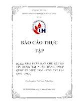 Giải pháp hạn chế rủi ro tín dụng tại ngân hàng TMCP quốc tế Việt Nam – PGD cát lái (2010 - 2012)