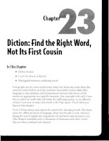Diction - Find the Right Word, Not Its First Cousin