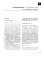 Intrathecal baclofen for the control of spinal and supraspinal spasticity