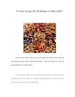 Có nên ăn gạo lứt để phòng và chữa bệnh?